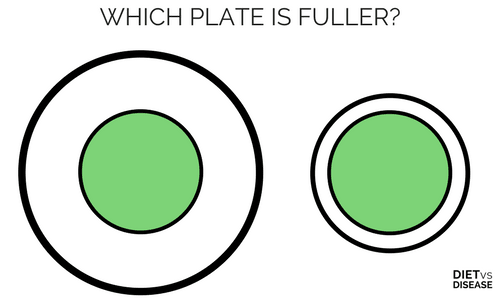 WHICH PLATE IS MORE FULL- Delboeuf Illusion