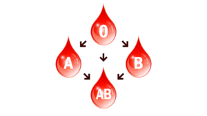 Blood Group Diet Article.png